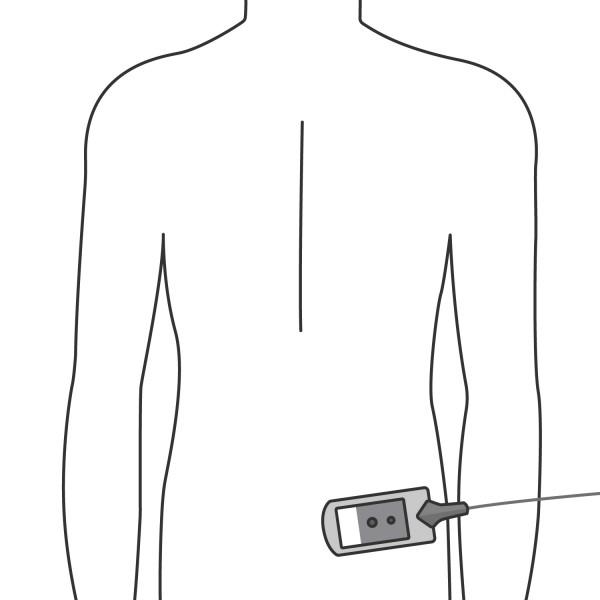 Rechte untere Rückenseite
