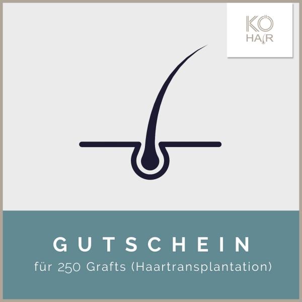 Haartransplantation 250 Grafts
