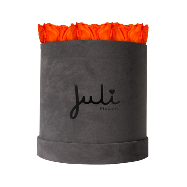 Orange Small Velvet Grau - rund