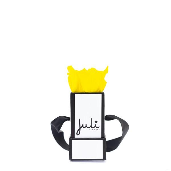 Gelb Mini Weiß - quadrat