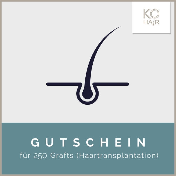Haartransplantation 250 Grafts